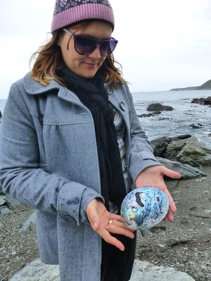 Paua shell, Wellington