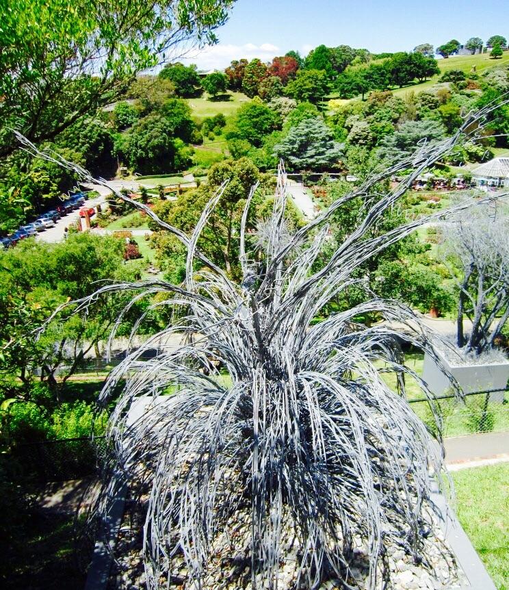 Sculpture Walk, Wellington Botanic Garden